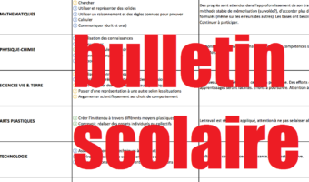 bulletin_scolaire_article-1-e1494269341791.png